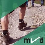 mvd CSD Quadrate Wandern 450x450